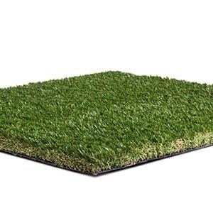 Namgrass Elise